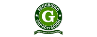 gseguridadlegal.cl